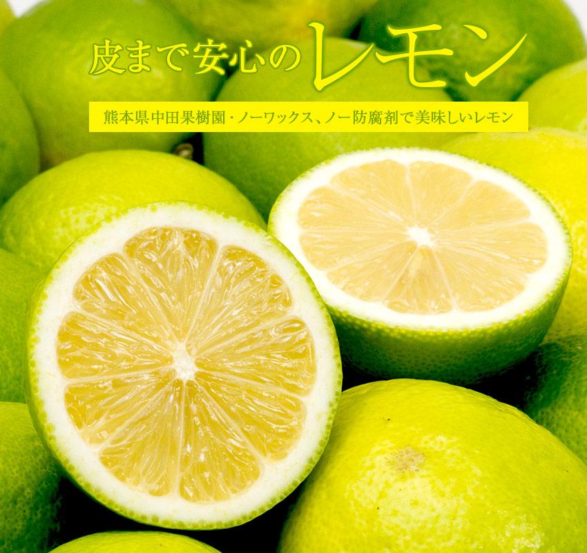 熊本県中田果樹園・ノーワックス、ノー防腐剤で美味しい「皮まで安心のレモン」