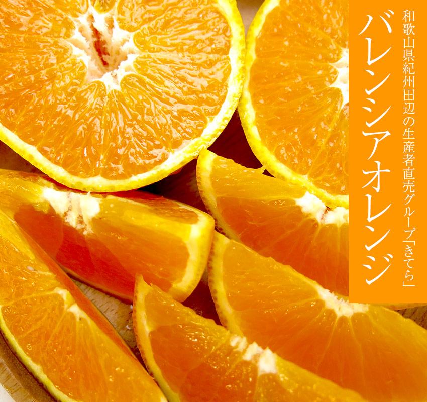 和歌山県紀州田辺の生産者直売グループきてら「バレンシアオレンジ」