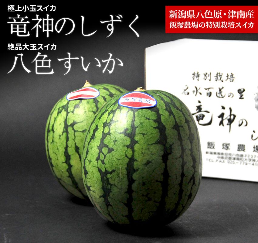 飯塚農場の特別栽培スイカ「龍神のしずく・八色スイカ」