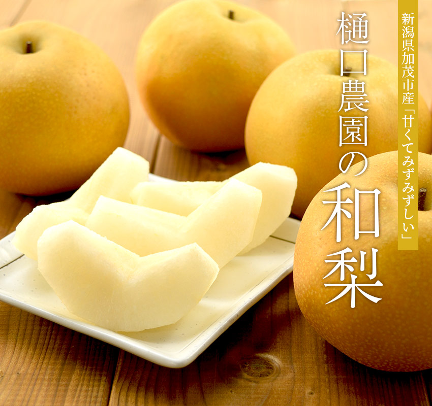 新潟県加茂市産 甘くてみずみずしい「樋口農園の和梨」