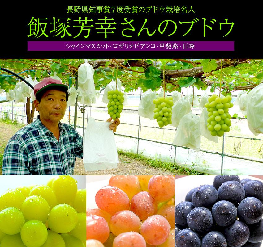長野県知事賞7度受賞!飯塚芳幸さんのブドウ