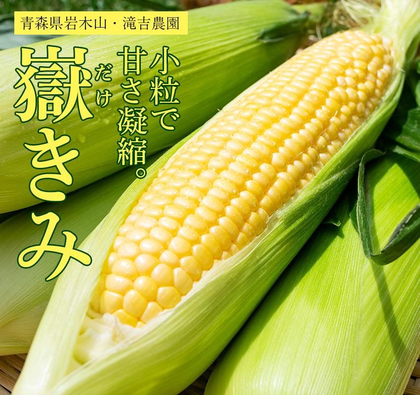 滝吉農園 青森県岩木山周辺で収穫されるブランドとうもろこし「嶽きみ(だけきみ)」