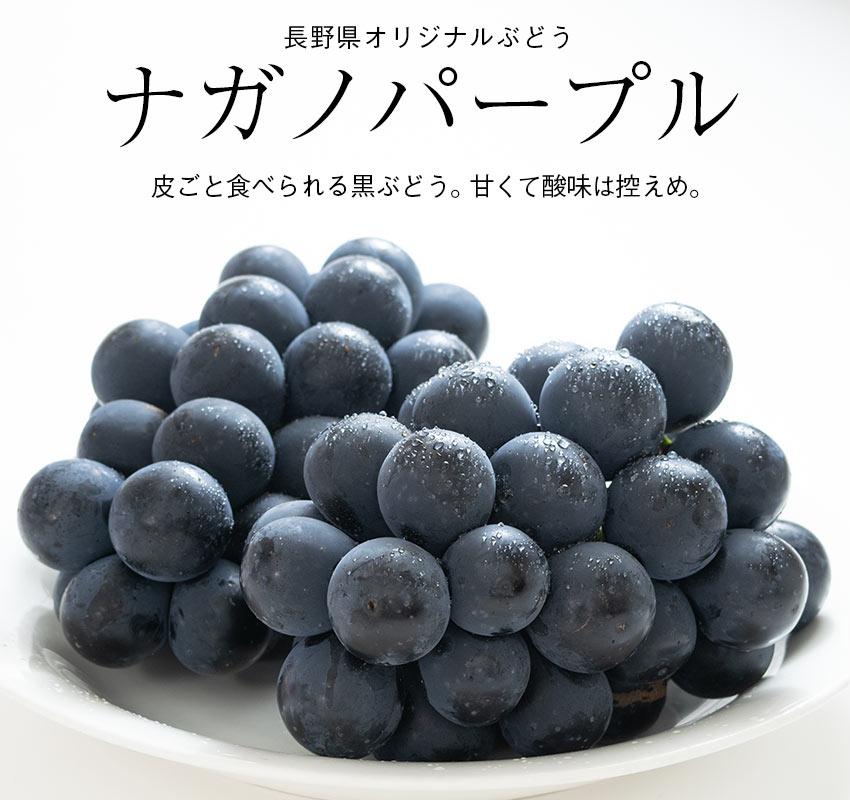 皮ごと食べられる黒ぶどう。甘くて酸味は控えめ。長野県オリジナルぶどう「ナガノパープル」