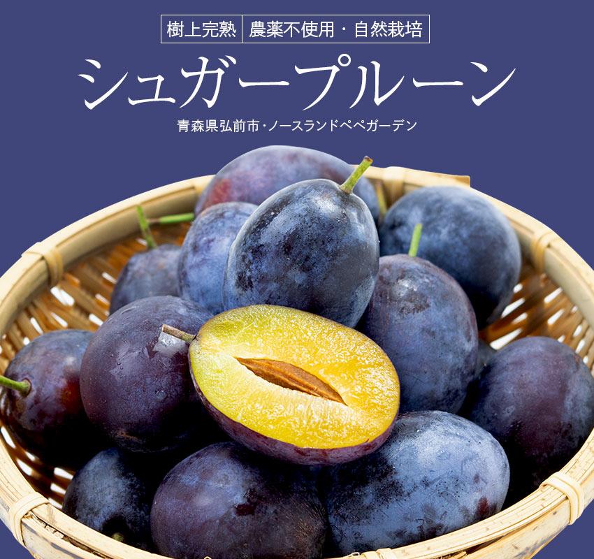 農薬不使用・自然栽培 青森県弘前市・ノースランドペペガーデン「樹上完熟シュガープルーン」