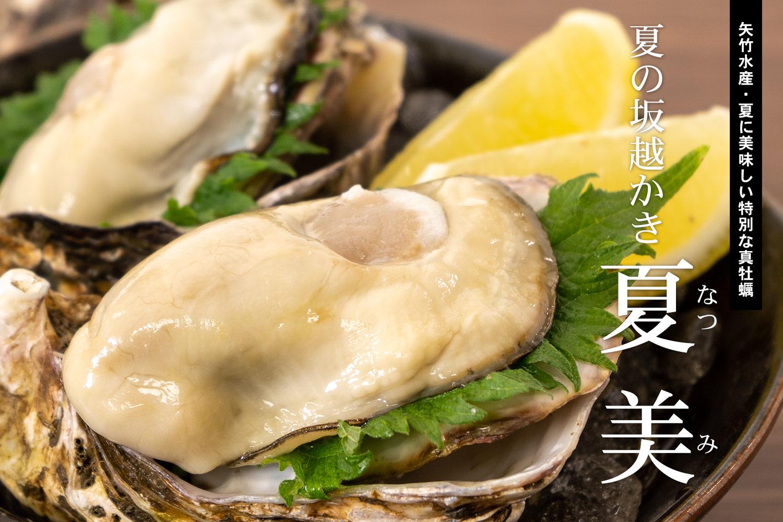 矢竹水産・夏に美味しい特別な真牡蠣「夏の坂越かき 夏美」